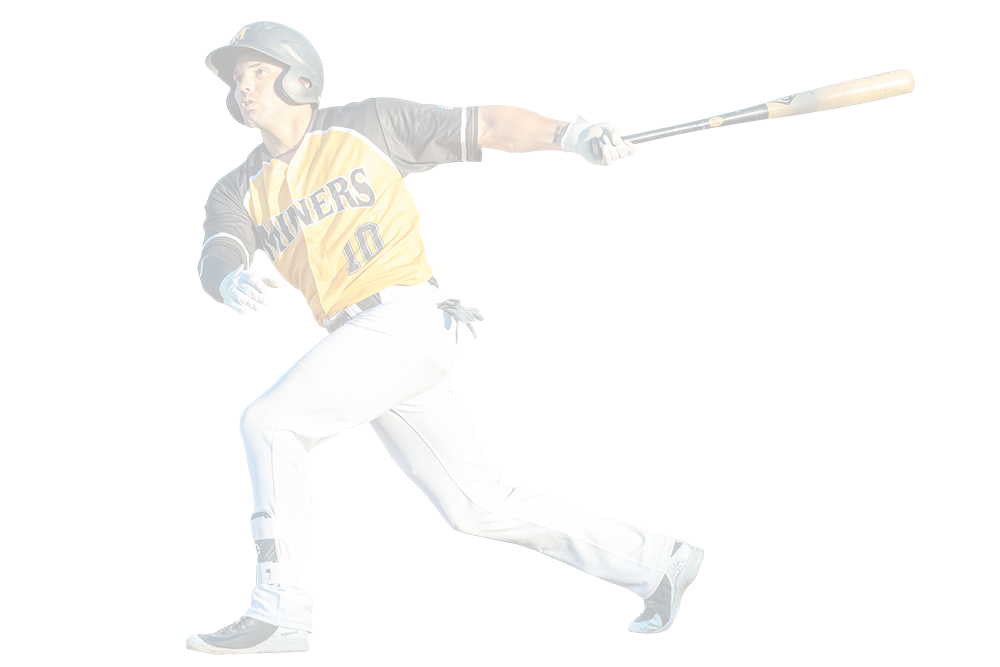 Sussex County Miners Player Swing Website Background